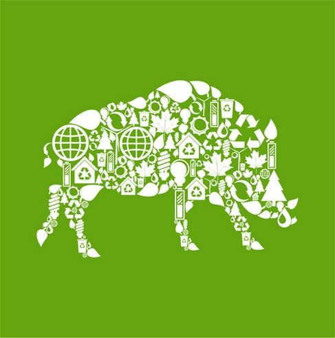 Environmental elements of the image vector collage of animal material wild boars.jpg
