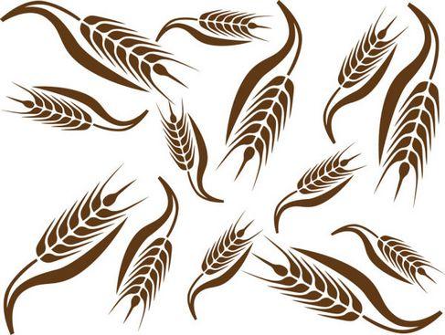 Wheat Pattern Vector 02.jpg