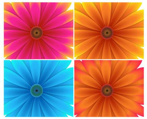 Four exquisite flowers background Vector